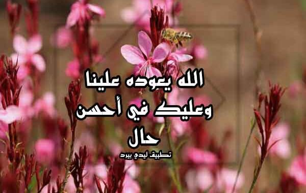 الرد على عيدكم مبارك وعساكم من عواده اذا احد قال عيد مبارك ايش ارد عليه الموقع المثالي