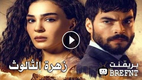 مسلسل زهرة الثالوث الحلقة 42 قصة عشق مترجمة كاملة الموقع المثالي
